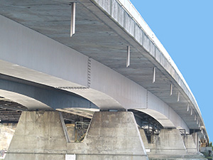bridgecloseup